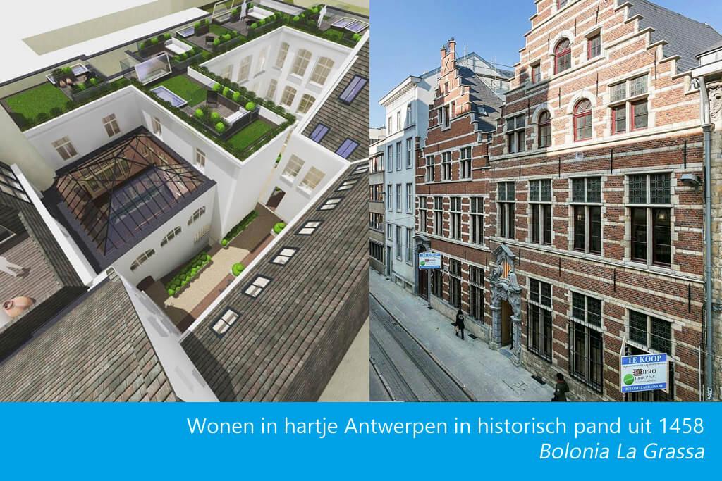 Dakluik op dakterras historisch pand in hartje Antwerpen